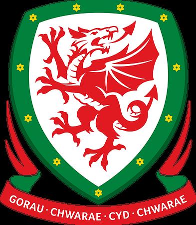 Football Association of Wales Logo