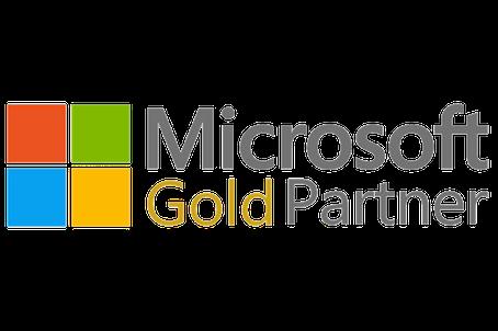 MS Gold Partner Logo
