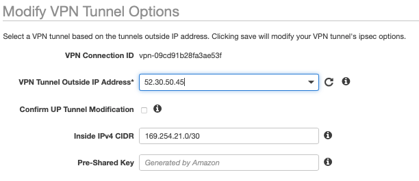 fig. 8, AWS VPN tunnel options